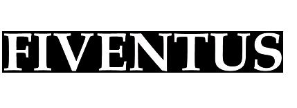 Logo Fiventus Unternehmensberatung für mittelständische Unternehmen (für transparenten Header)